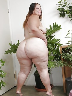 Featuring curvy figured ladies and great massive asses